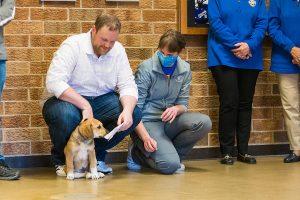 Healing Patriots, CUW, Service Dog, Donation